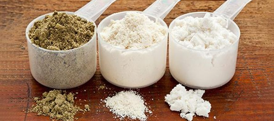 How-To-Choose-Use-Store-Protein-Powder-for-Preppers-890x395_c